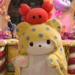 可爱头像毛绒玩具 高清超萌可爱头像玩偶毛绒玩具图片