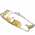 可爱猫头像萌萌哒图片 躺着的猫咪也太萌了