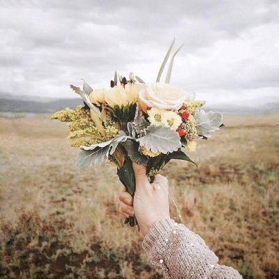 鲜花头像微信唯美图片