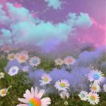 鲜花头像微信唯美图片 高清精美的唯美意境鲜花头像