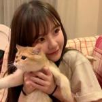 可爱女生抱猫闺蜜头像 高清好看的闺蜜头像真人二人抱猫图片