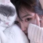 女生抱猫咪的头像图片 高清漂亮的个性网图头像女抱猫