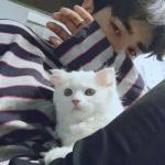 小奶猫男生头像真人 超帅男生高清网图