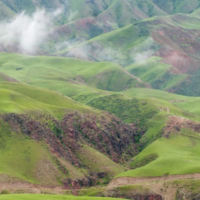清新绿色草原牧场头像图片