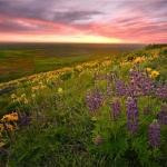 微信头像自然风景唯美 高清超唯美的风景微信头像图片