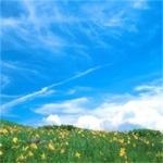 绿色系生机勃勃的春天风景头像